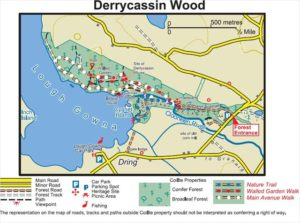derrycassin-map